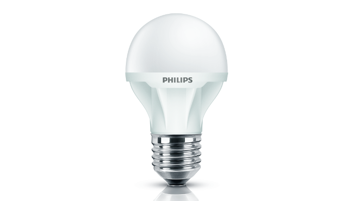 EcoBright LED bulb